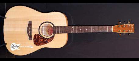 guitare acoustique norman b20